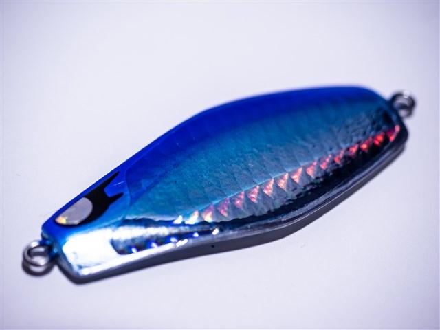 鮭 2019 北海道 釣り
